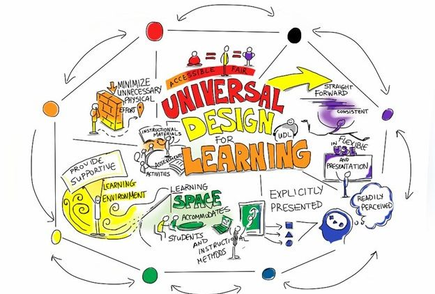 Executive Function and Universal Design for Learning
